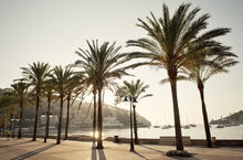 Canvas print - Mallorca Boardwalk