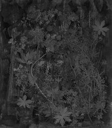 Wall mural - Flora Hysterica 3