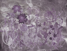 Wall Mural - Flora Hysterica 5
