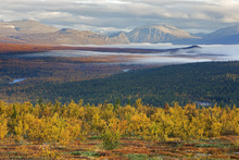 Canvas print - Autumn in Abisko