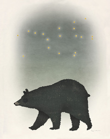Wall mural - Ursa Major