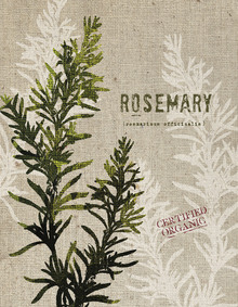 Canvas print - Organic Rosemary