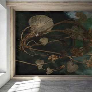 Precisione toccante nelle opere d'arte drammatiche della nuova collezione Flora Hysterica II