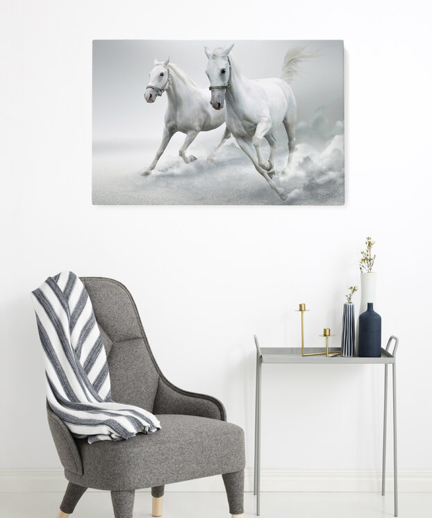 Interior Design For Transportation The Horses