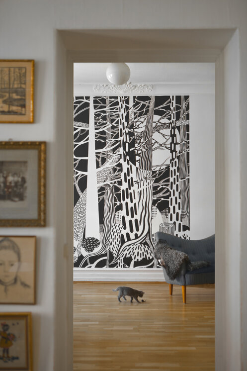 fir forest fototapete nach ma photowall. Black Bedroom Furniture Sets. Home Design Ideas