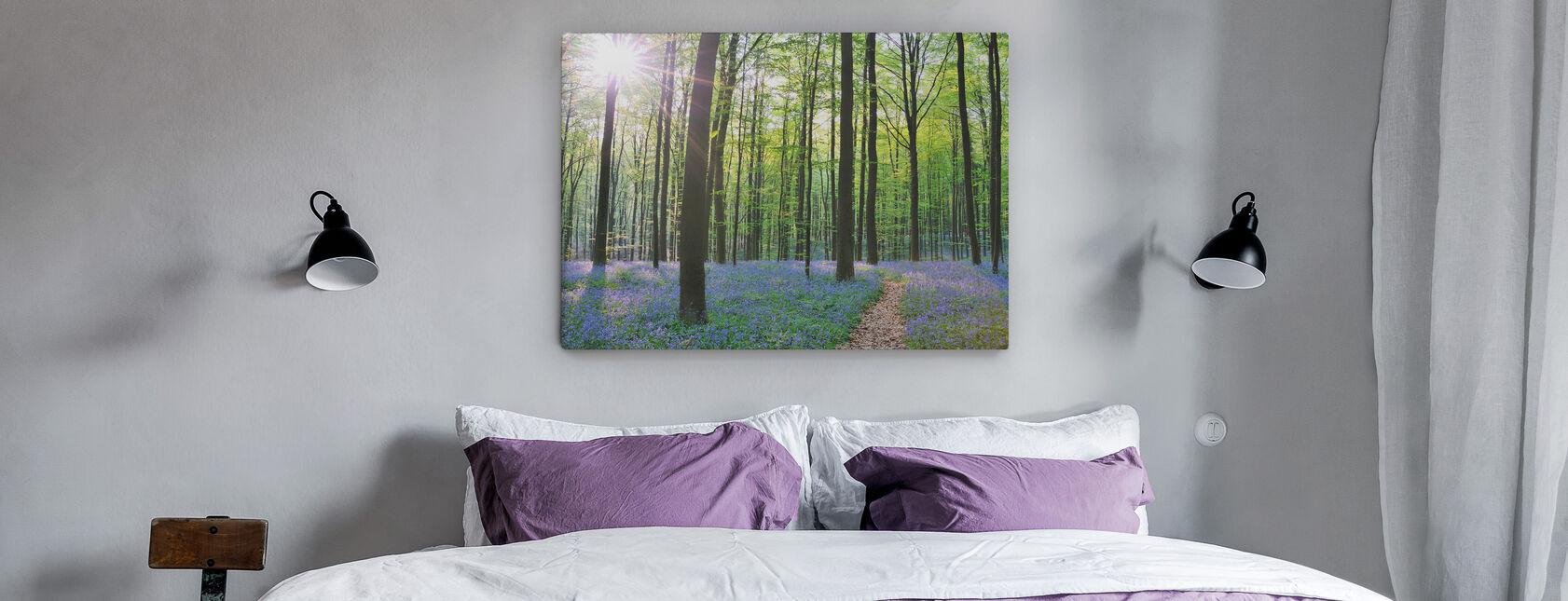 Forests & Woodlands