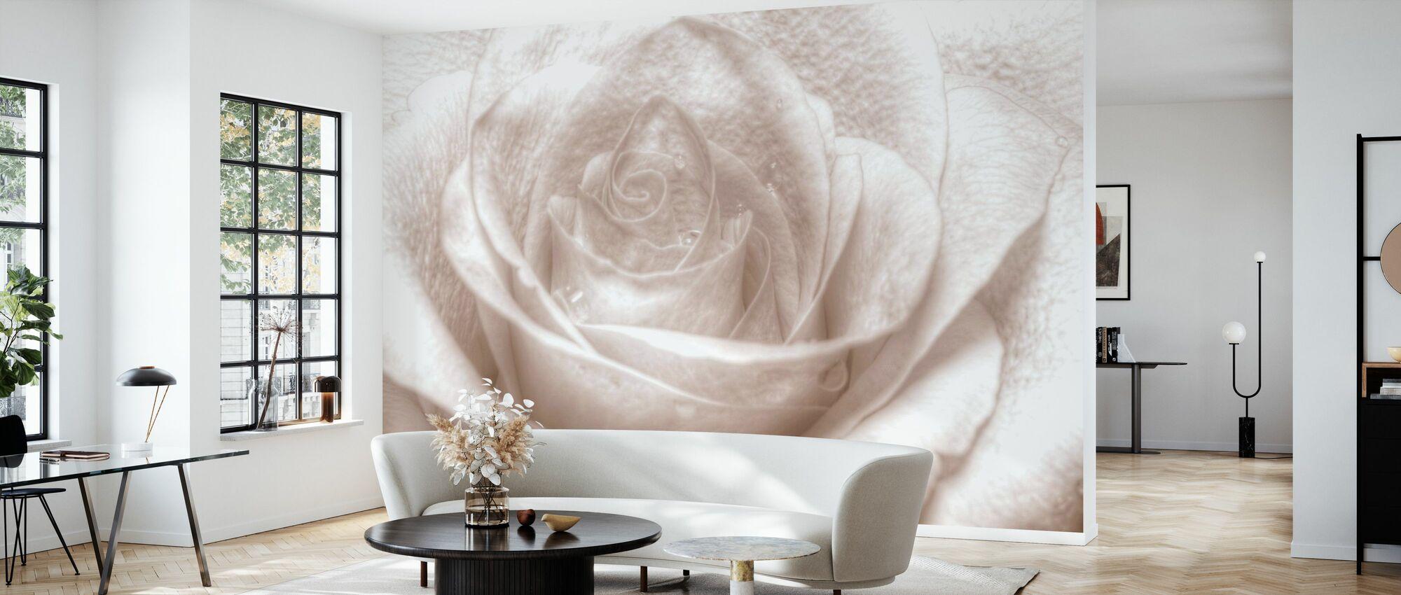 High Key Rose - Wallpaper - Living Room