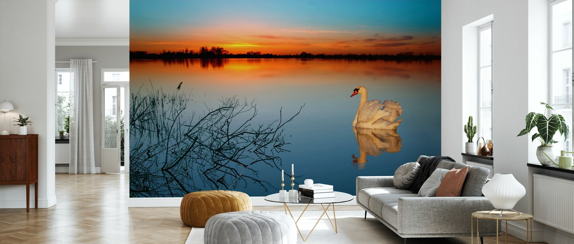 Swan on a lake - Wallpaper - Living Room