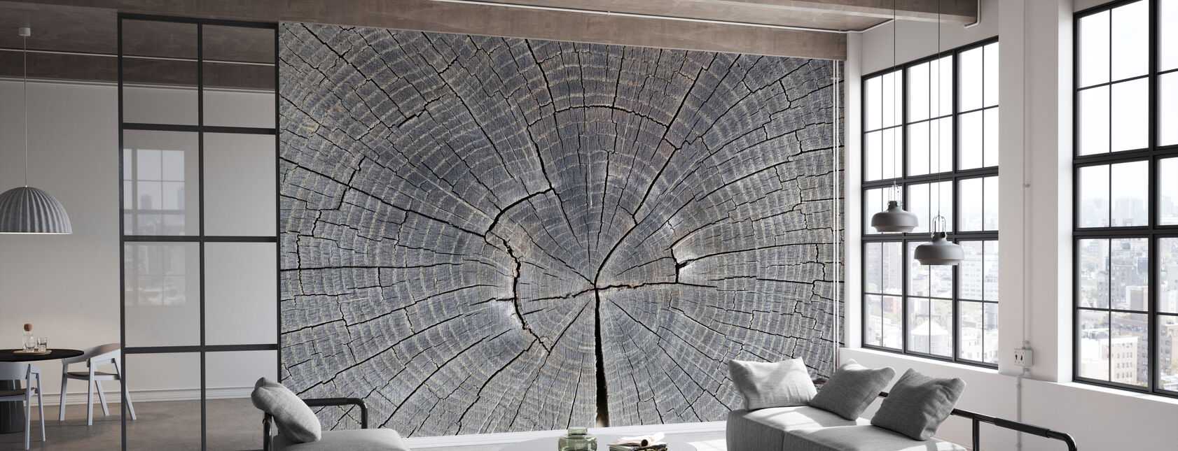 Tree Trunk Showing Growth Rings - Wallpaper - Office