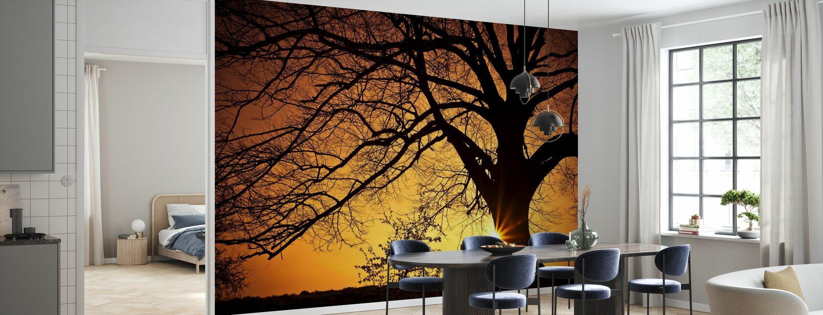 Silhouet van een wilgenboom in zonsondergang - Behang - Keuken