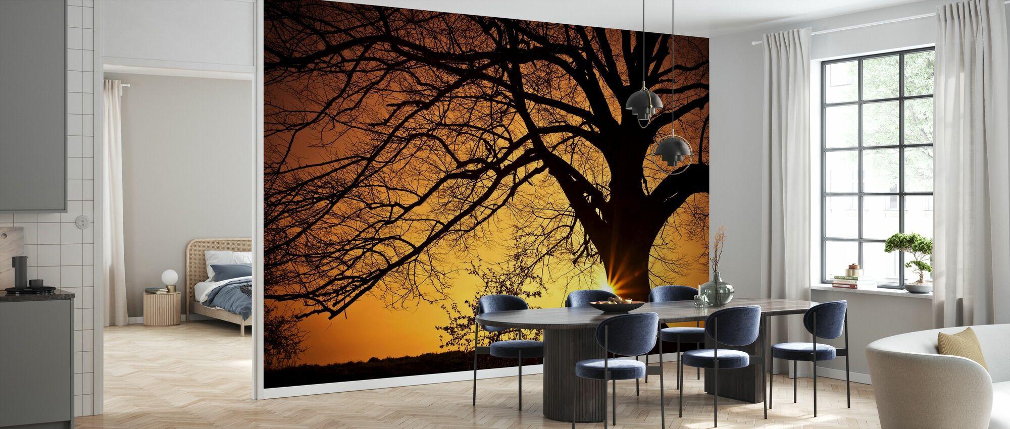 Silhouette di un albero di salice al tramonto - Carta da parati - Cucina