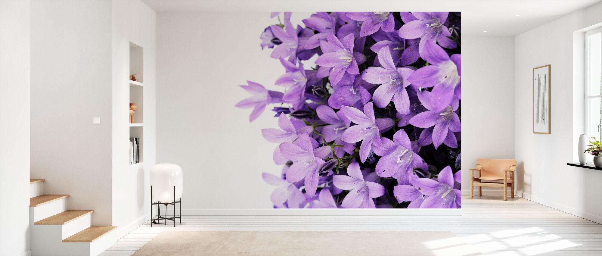Fleurs violettes - Papier peint - Entrée