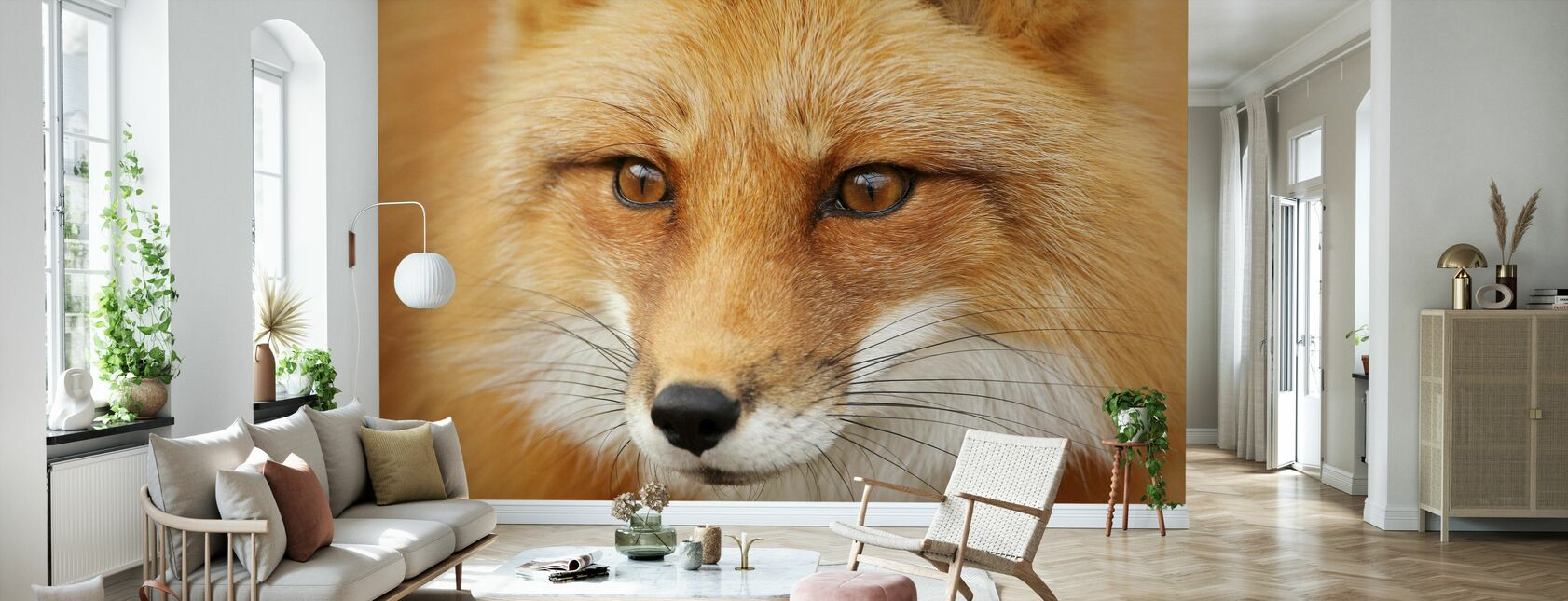 Red Fox - Wallpaper - Living Room