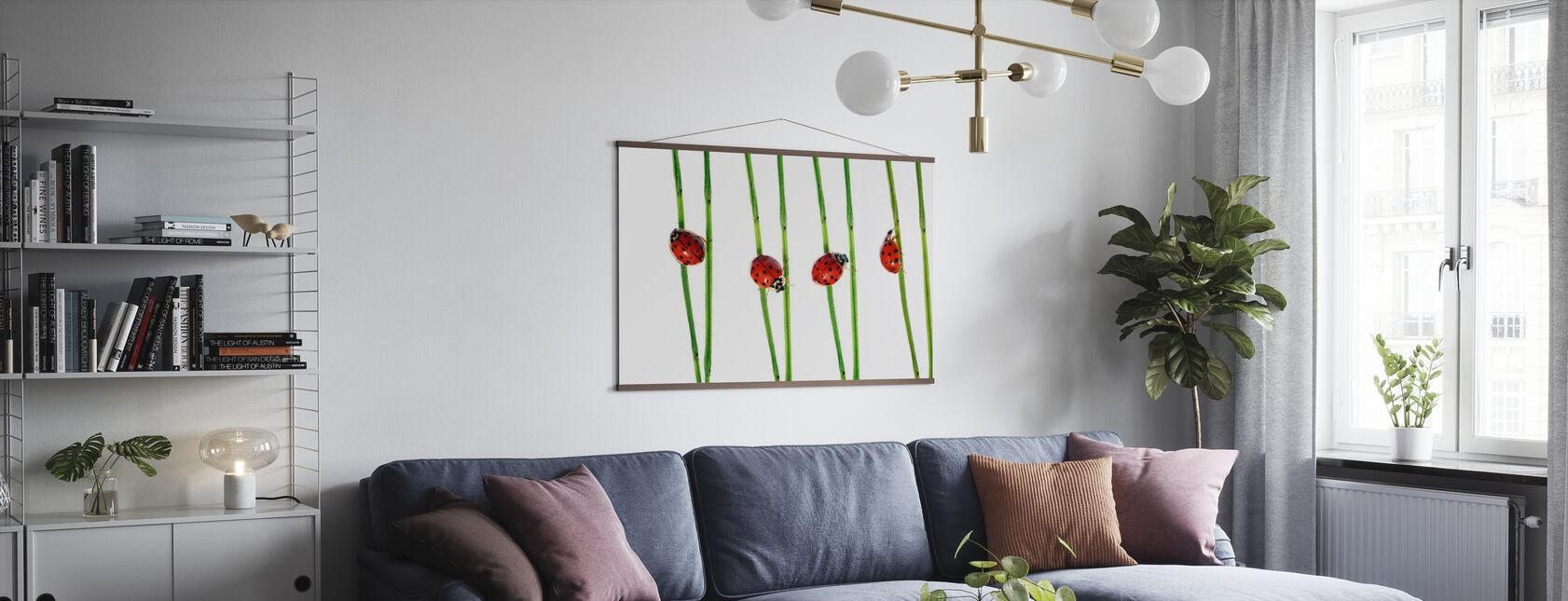 Kolekcja Lady Bugs - Plakat - Pokój dzienny