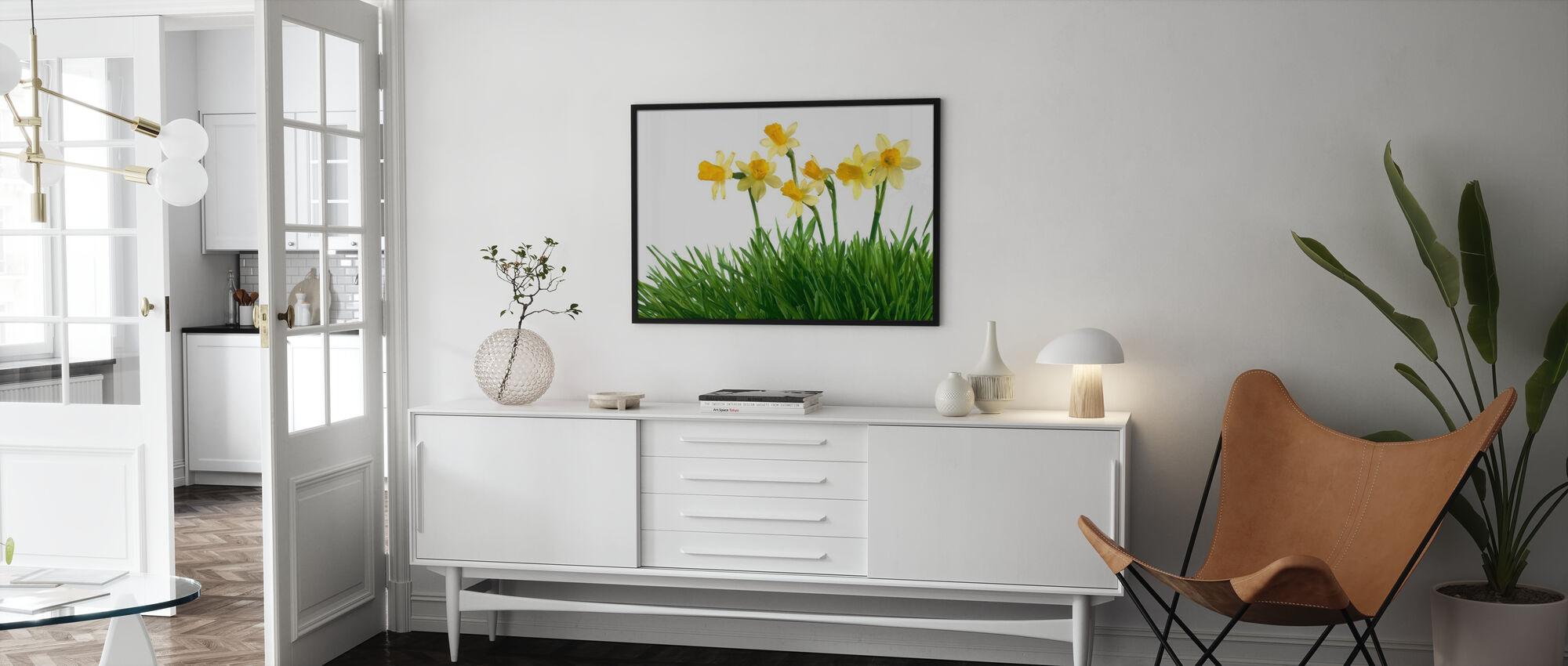 Påskeliljer i grønt gress - Plakat - Stue
