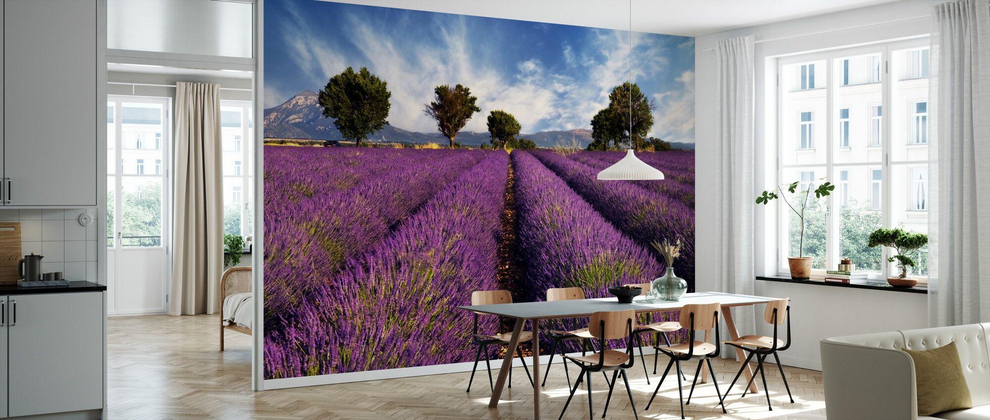 Lavendelveld in de Provence - Behang - Keuken