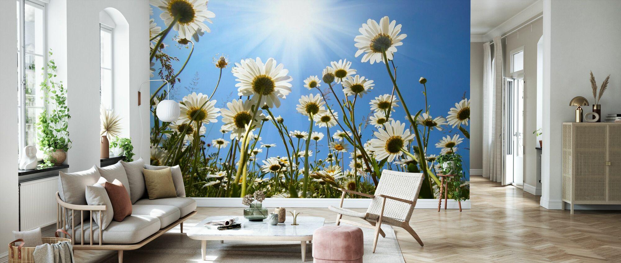 Marguerites blanches - Papier peint - Salle à manger
