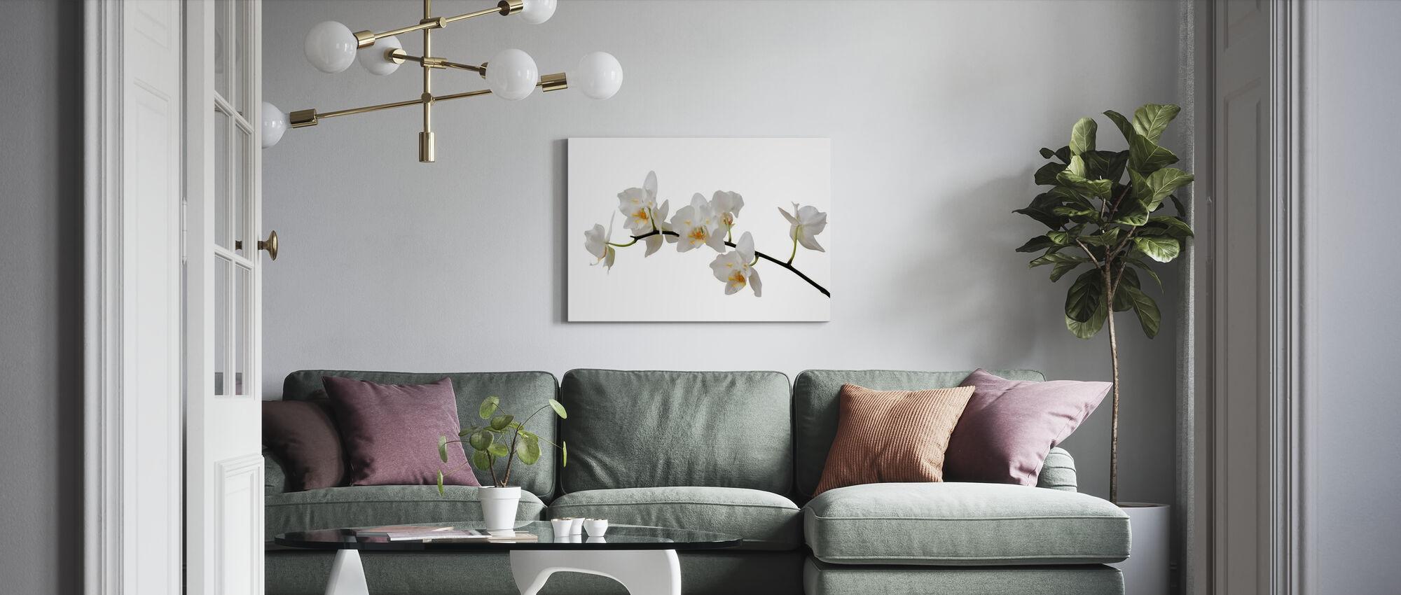 Witte Orchidee Stegel - Canvas print - Woonkamer