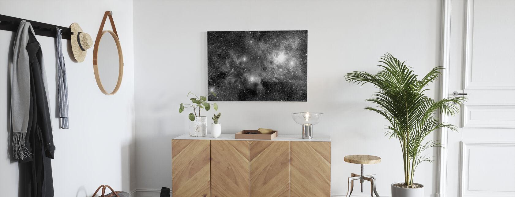 Stjernestjernetåger - Billede på lærred - Entré