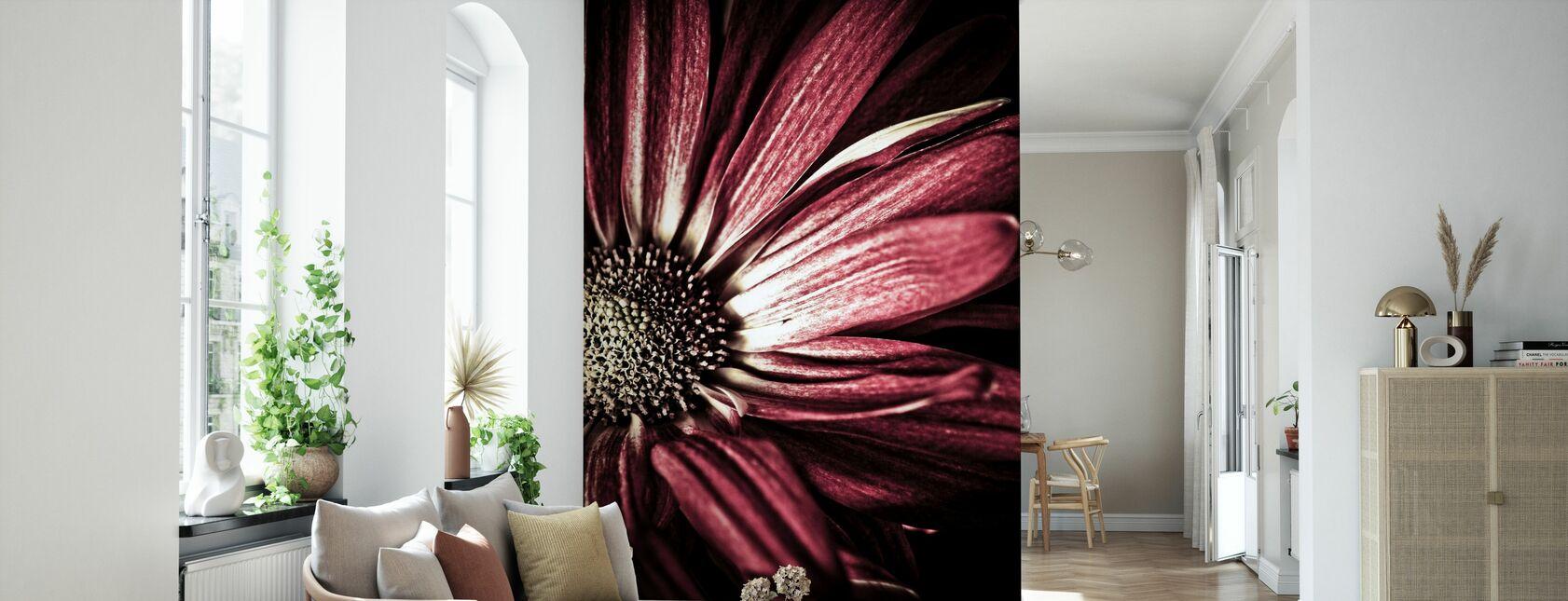 Dark Daisy - Wallpaper - Living Room