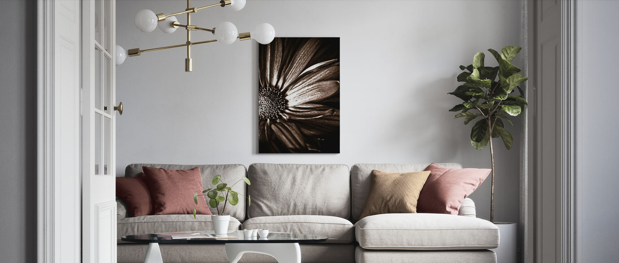 Donker Madeliefje - sepia - Canvas print - Woonkamer