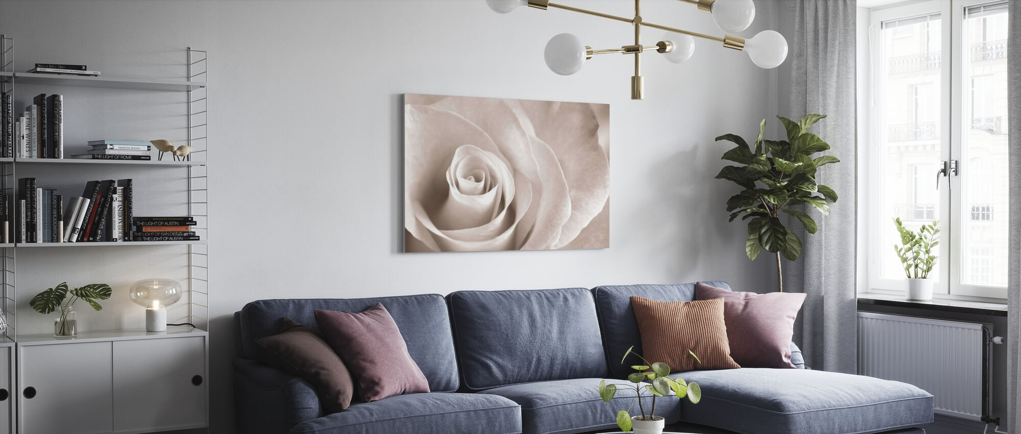Zachte Roos - Sepia - Canvas print - Woonkamer