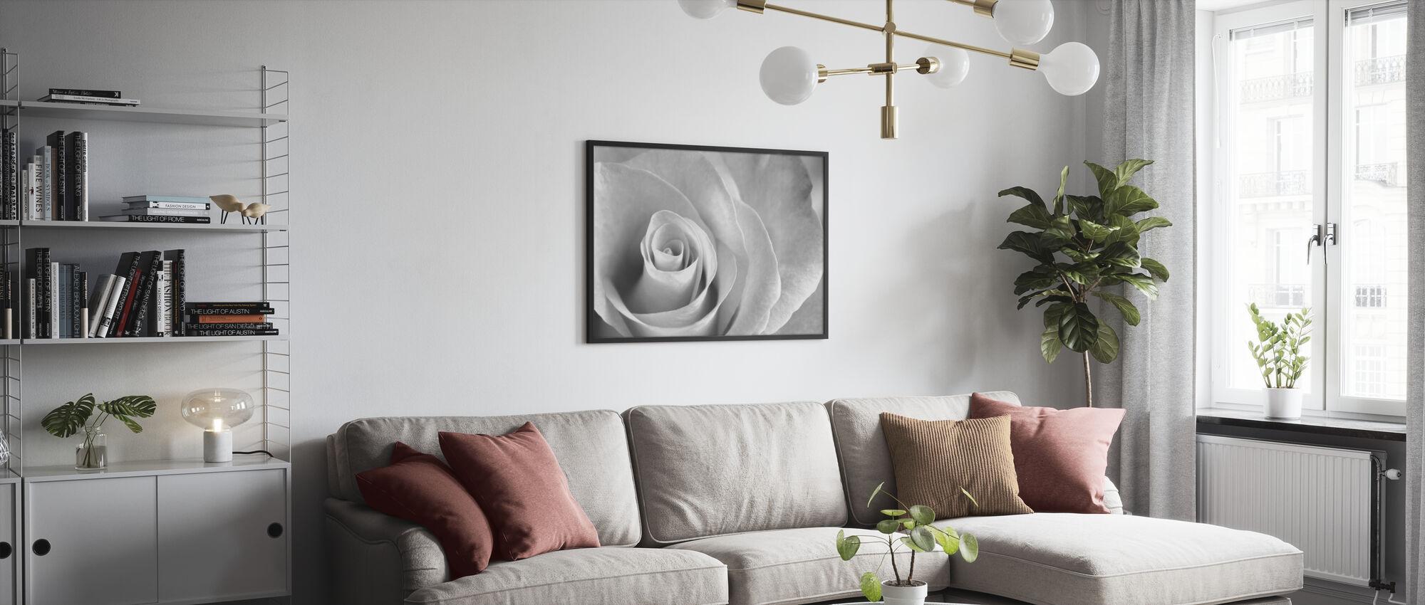 Soft Rose - b/w - Framed print - Living Room