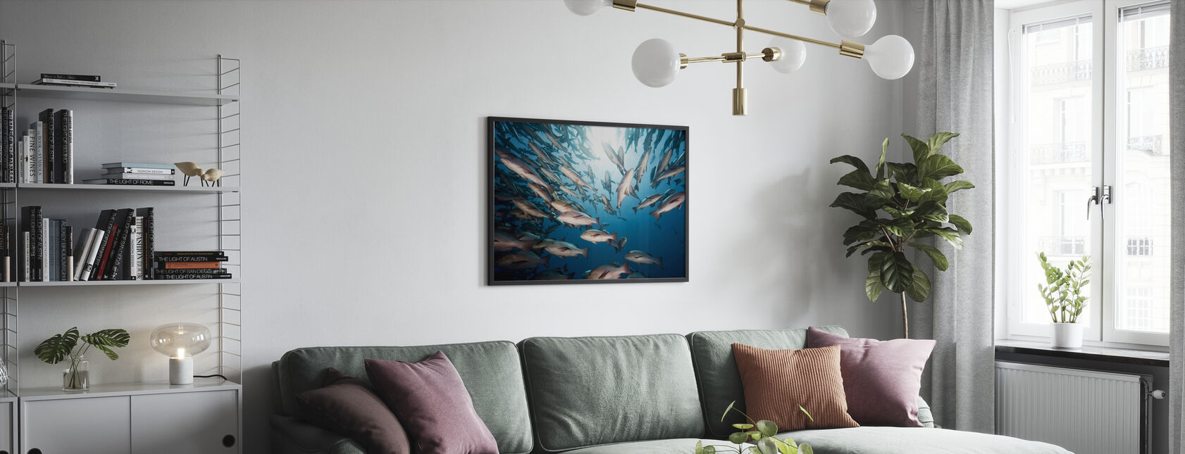 Mangrove Snapperit - Kehystetty kuva - Olohuone