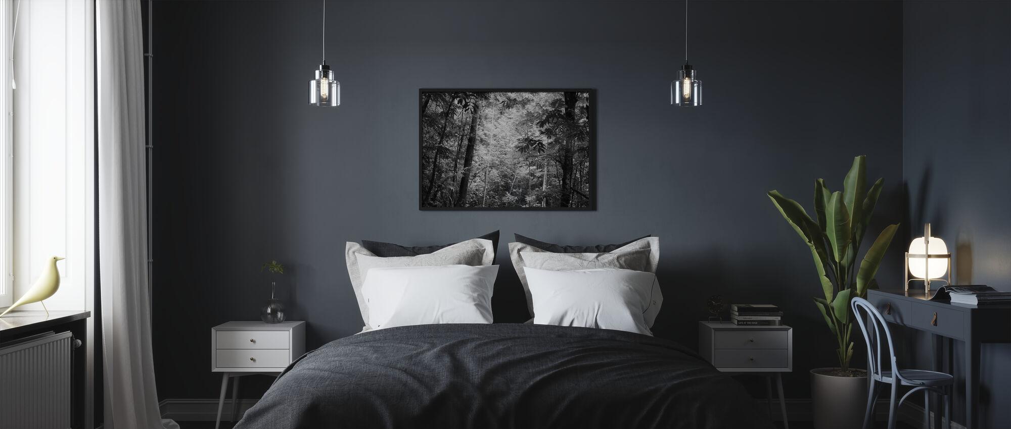 Höyrymetsä - b/w - Kehystetty kuva - Makuuhuone