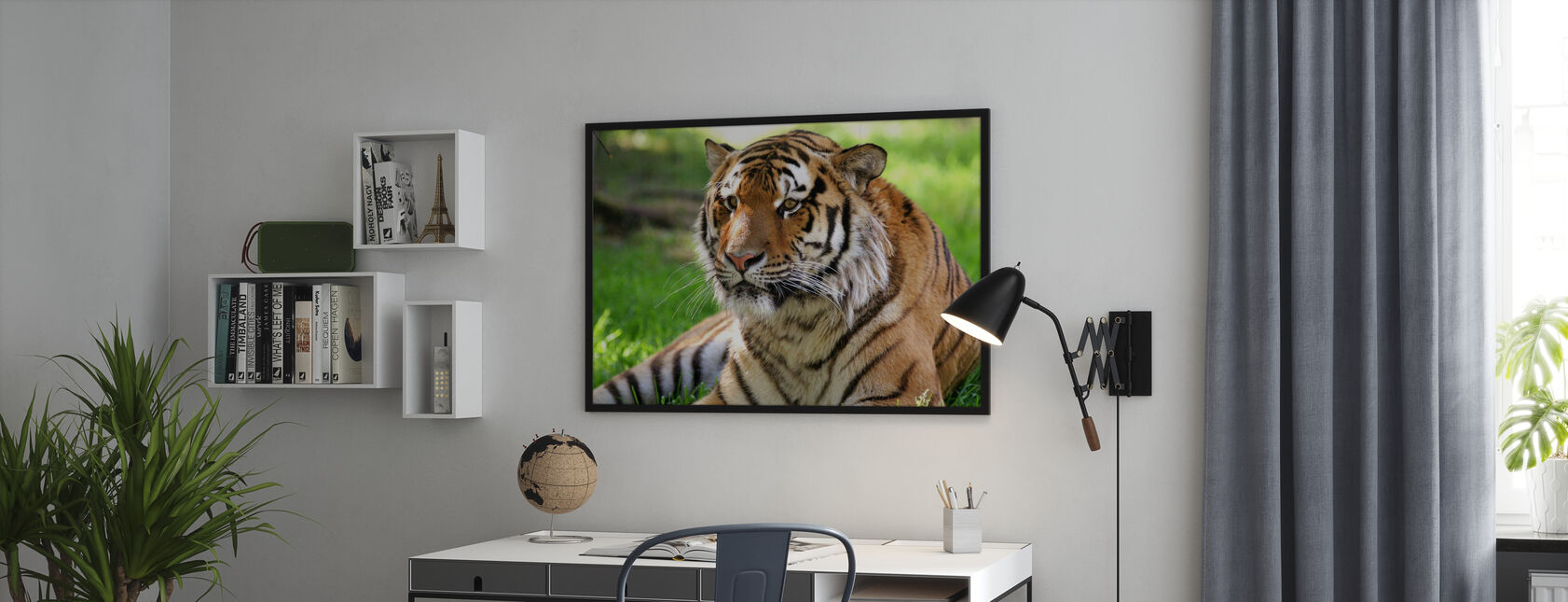 Tiger - Poster - Uffici