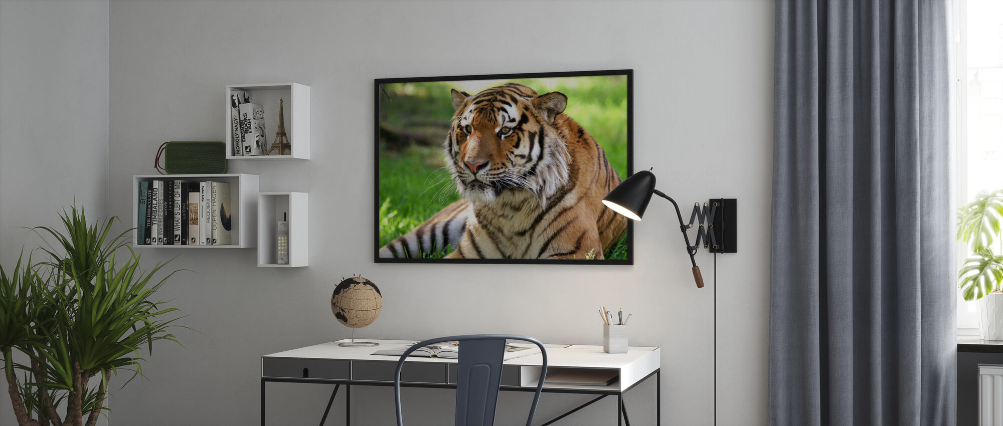 Tiger - Poster - Office