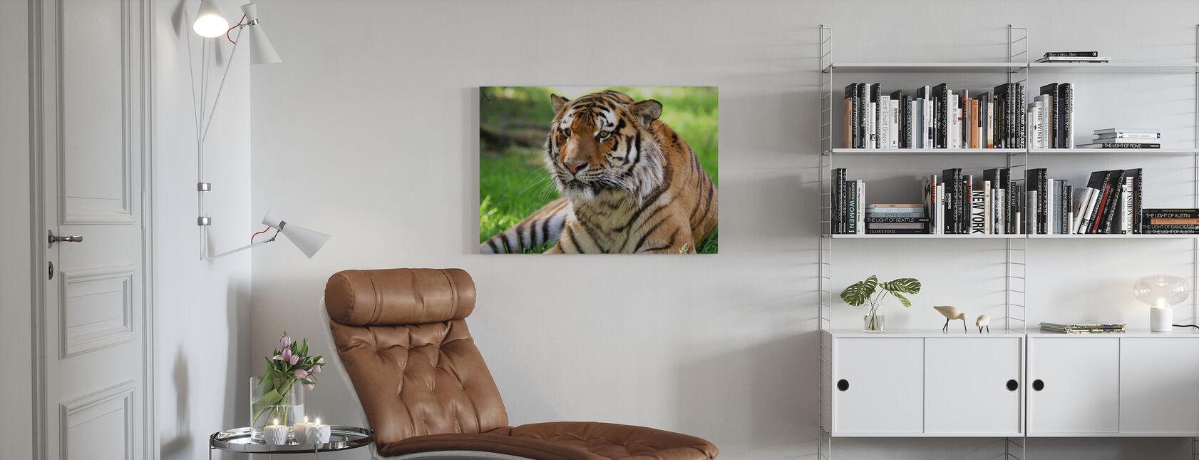 Tiger - Canvas print - Living Room