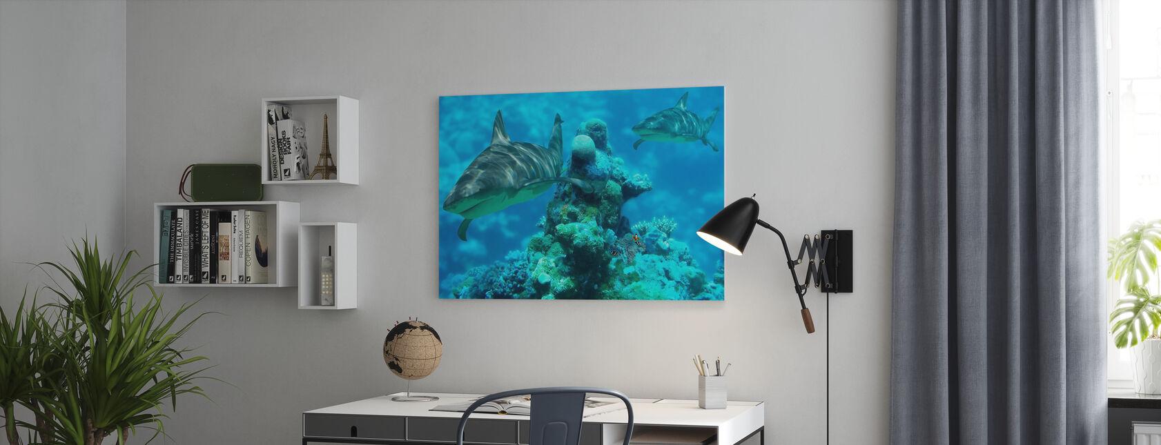 Bommie di squalo - Stampa su tela - Uffici
