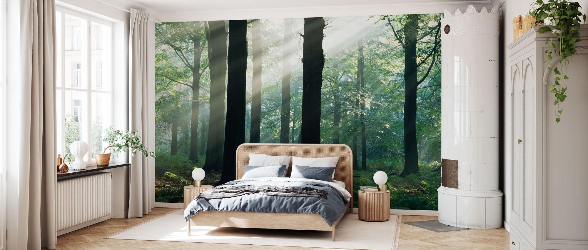 Zonneschijn in de ochtend - Behang - Slaapkamer