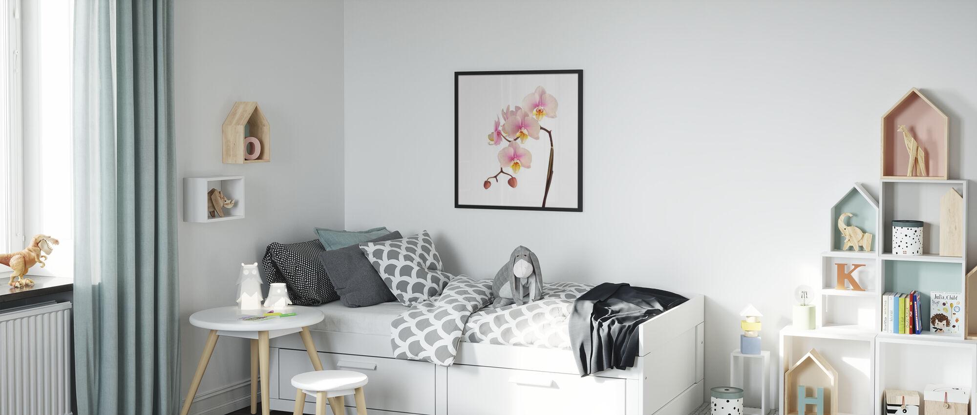 Rosa orkidé stam - Poster - Barnrum