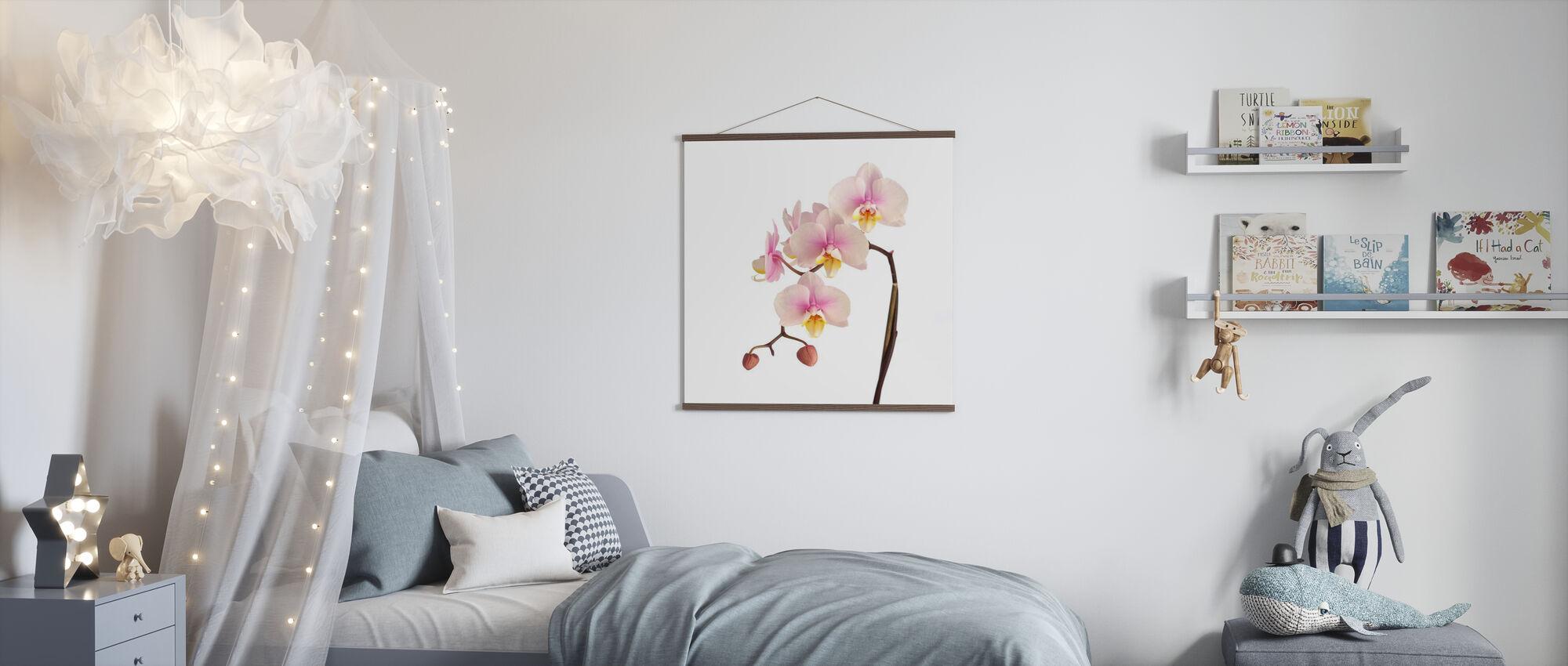 Pink Orchid Stem - Poster - Kids Room