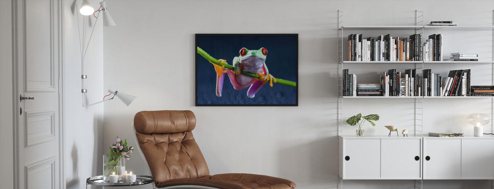 Rana rossa - Poster - Salotto