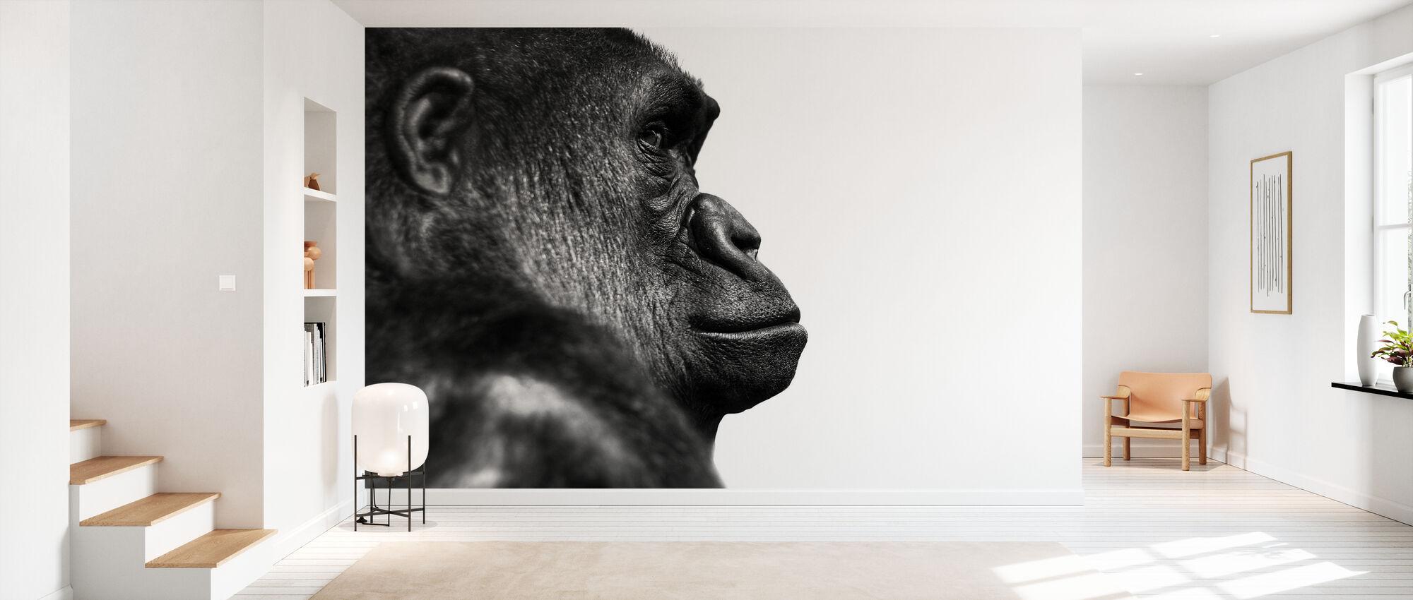Gorilla - b/w - Wallpaper - Hallway