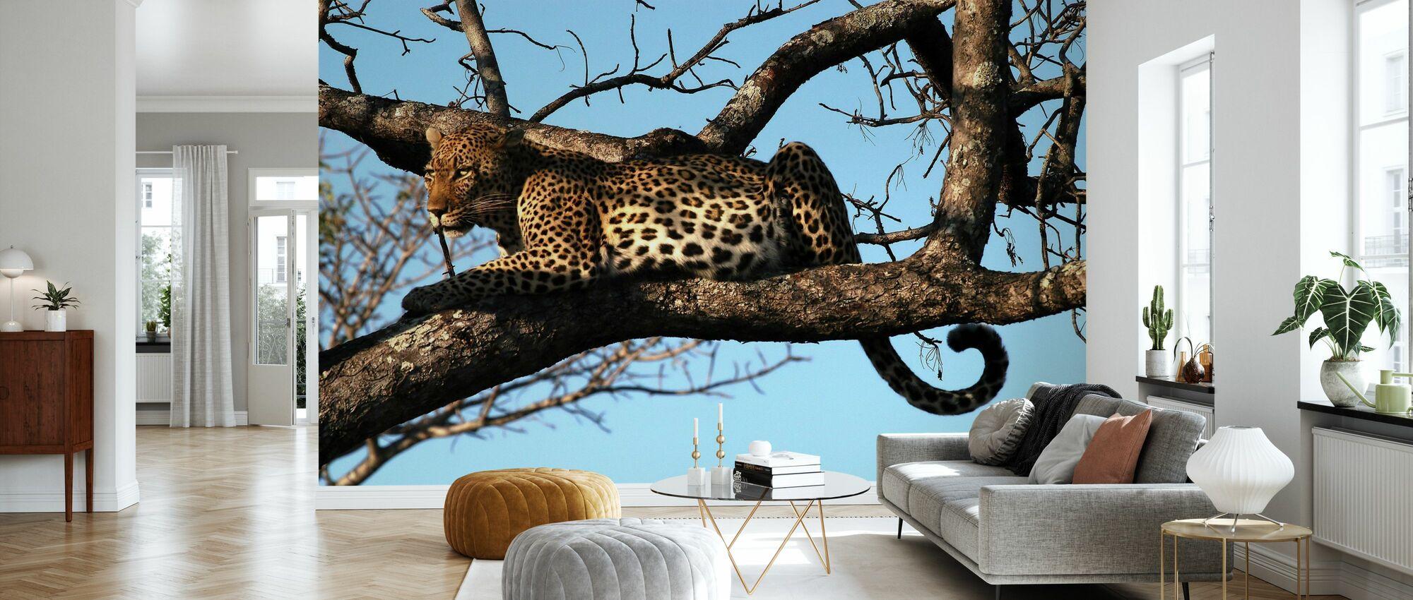 Léopard dans l'arbre - Papier peint - Salle à manger