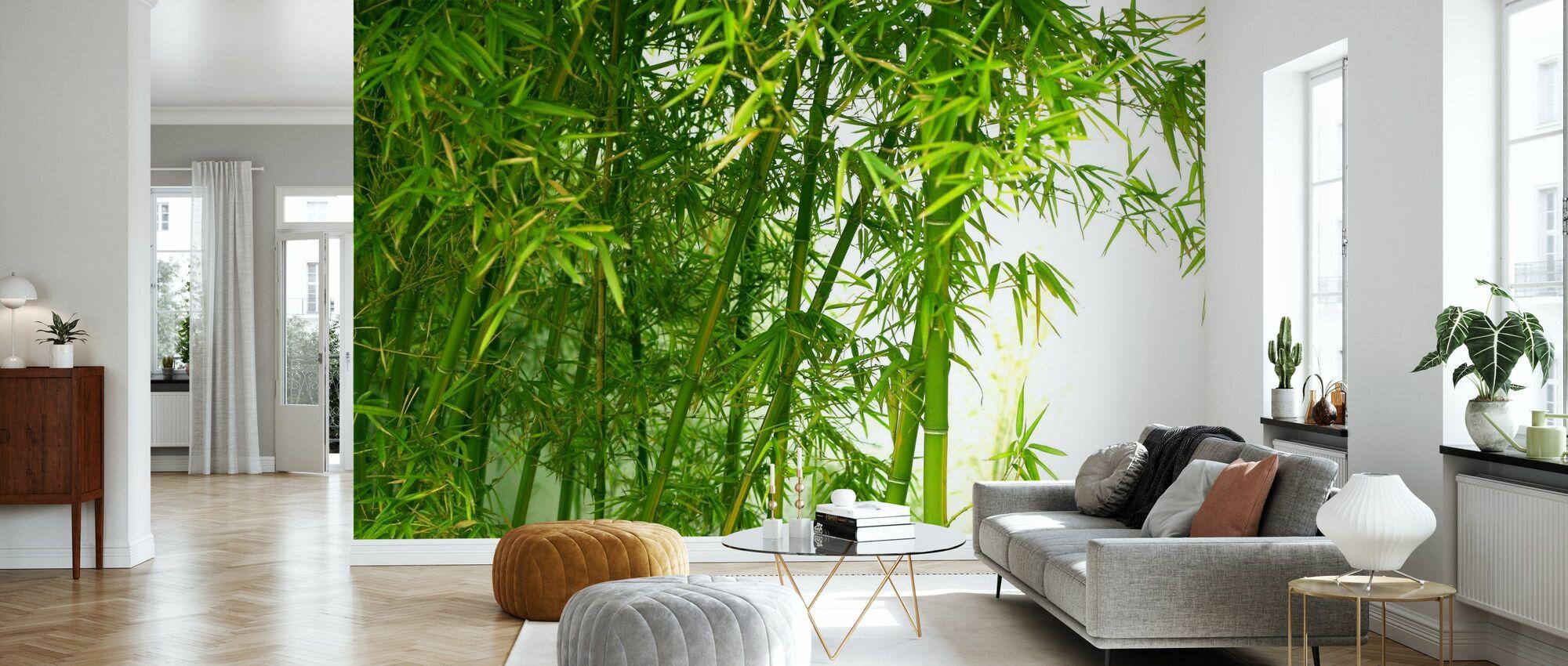Schöner Bambus - Tapete - Wohnzimmer