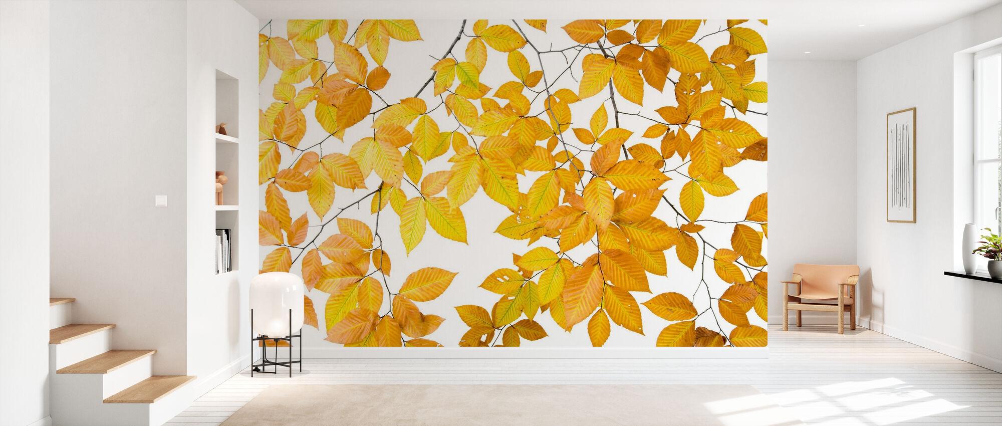 Gula blad på vit bakgrund - Tapet - Hall
