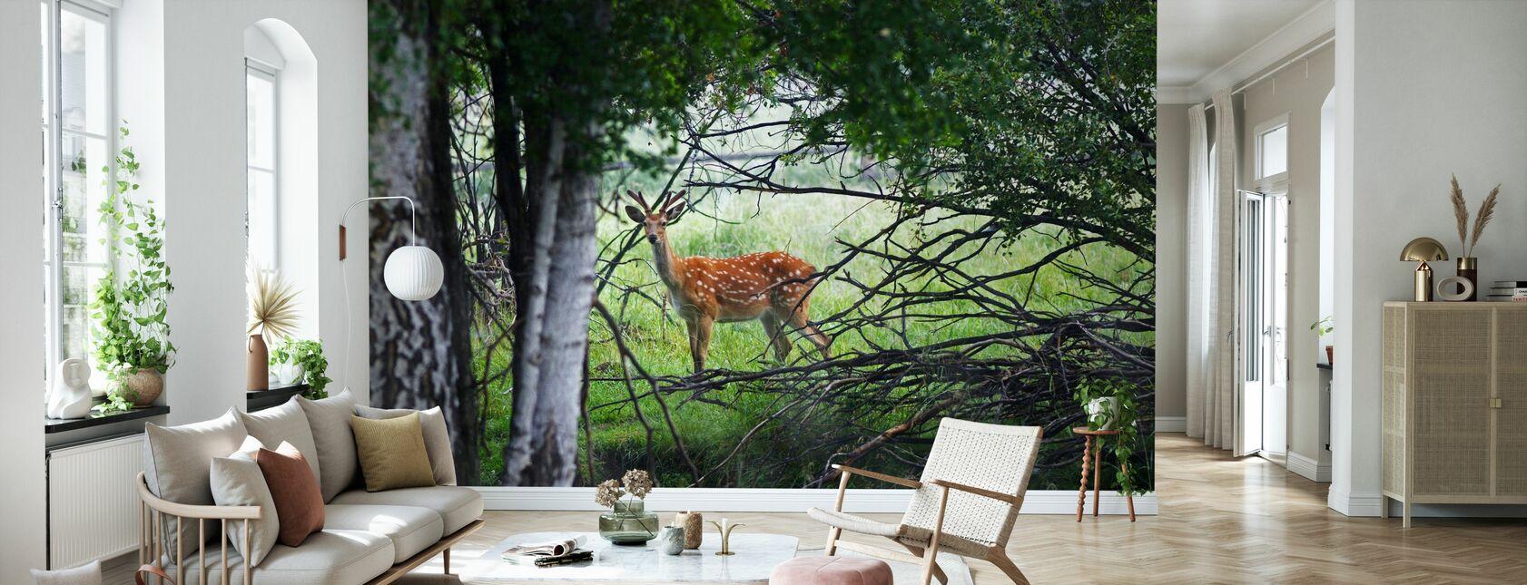 Cerf sauvage - Papier peint - Salle à manger