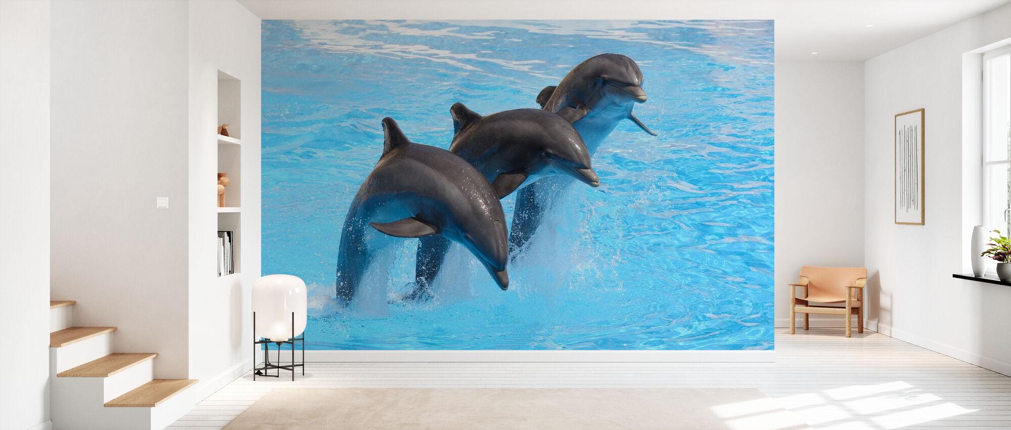 Delfini a bottiglia - Carta da parati - Sala