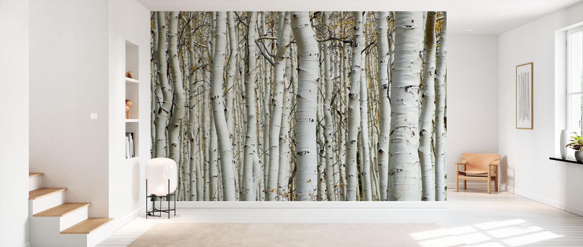 Aspen Forest - Wallpaper - Hallway