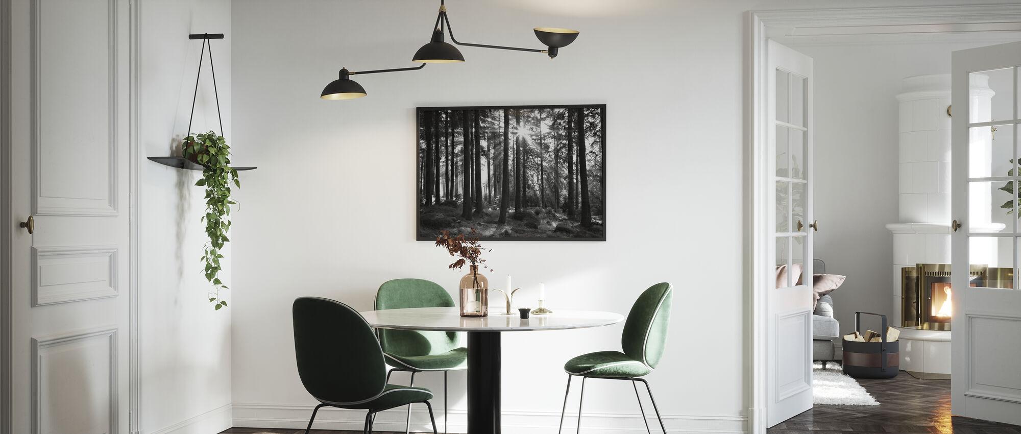 Auringonsäde puiden läpi - Juliste - Keittiö