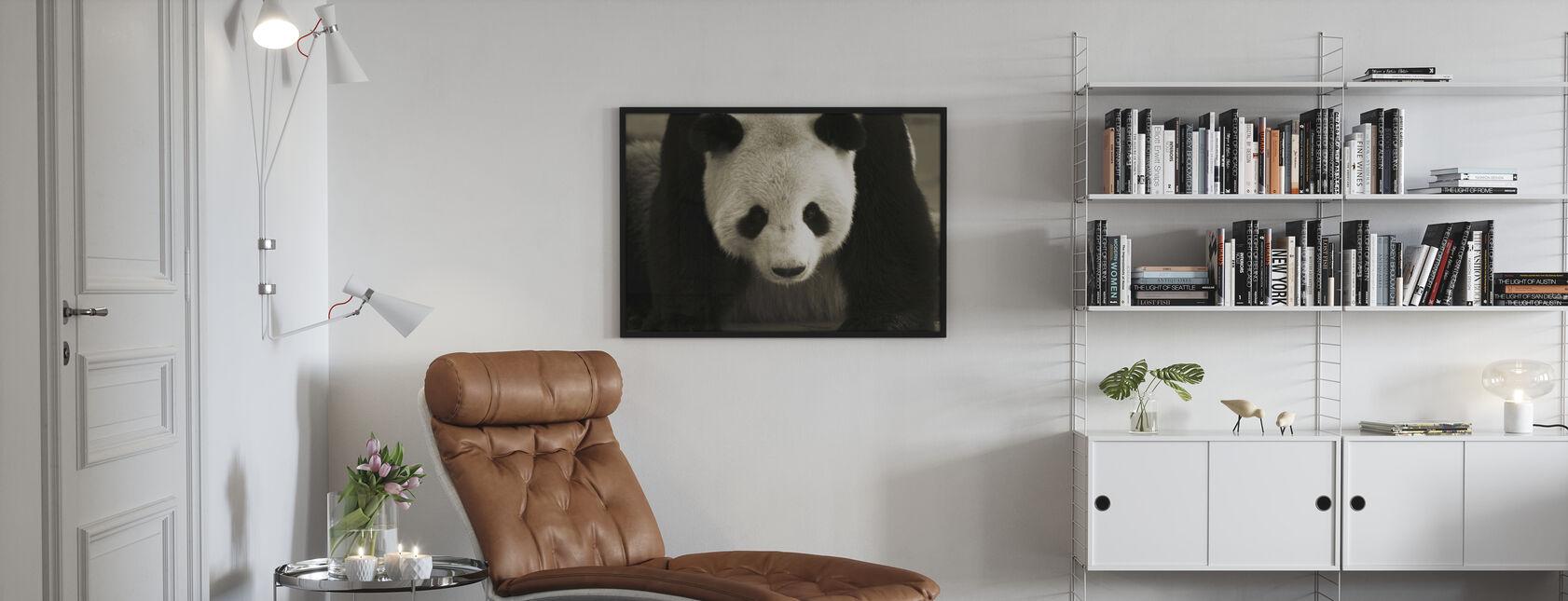 Giant Panda - Poster - Living Room