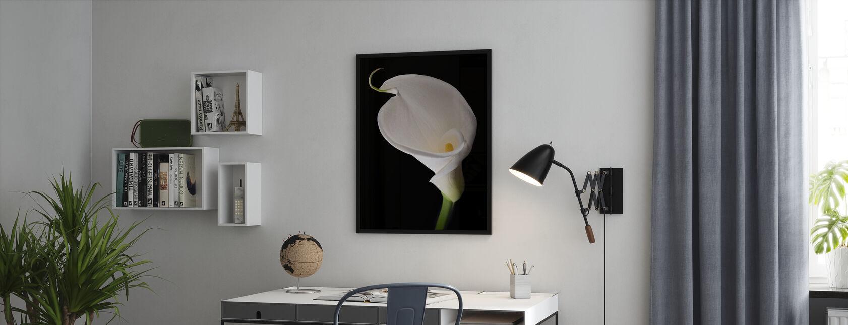 White Calla - Poster - Office