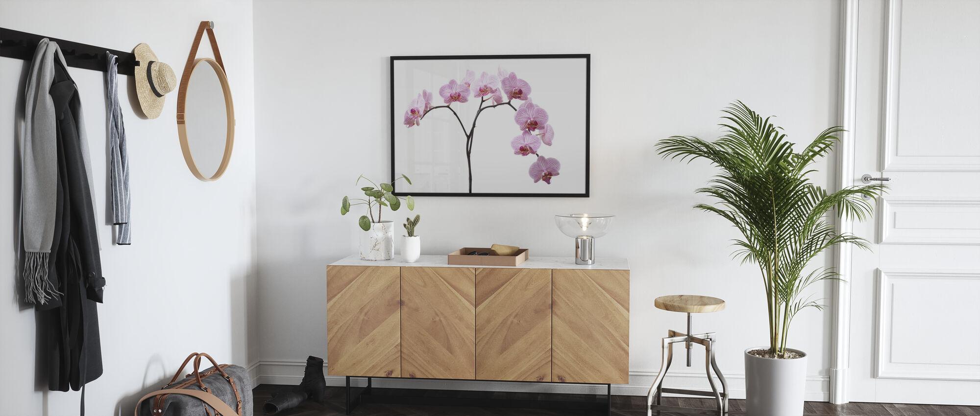 Pink Orchids - Framed print - Hallway