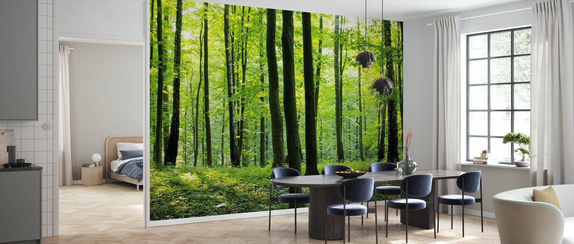 Rural Forest - Wallpaper - Kitchen