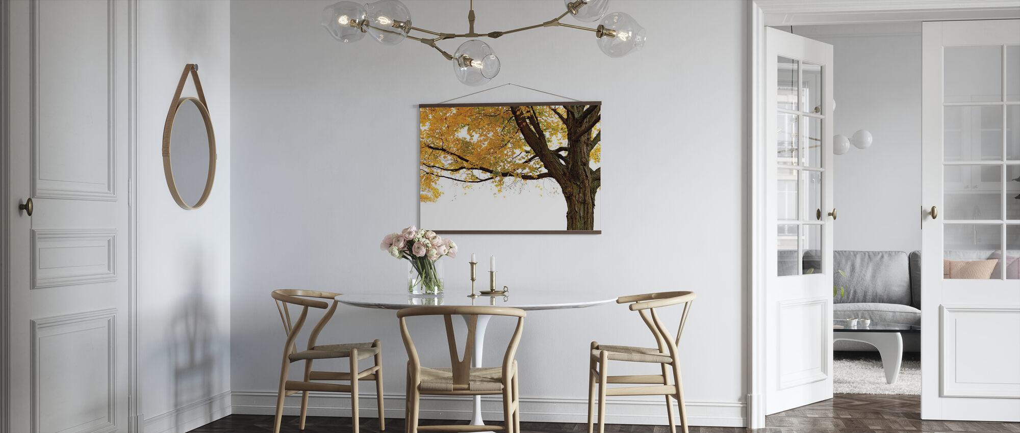 Autumn Maple Tree - Poster - Kitchen